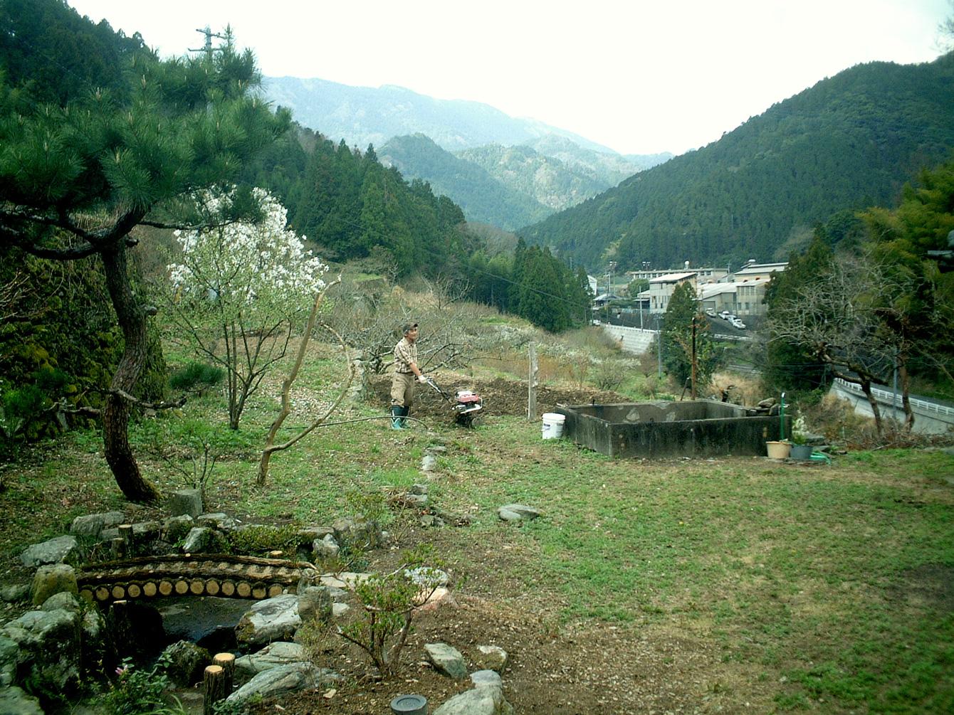 当時の様子。雑草が刈り取られた状態で、この後に苗木や花が植えられた。