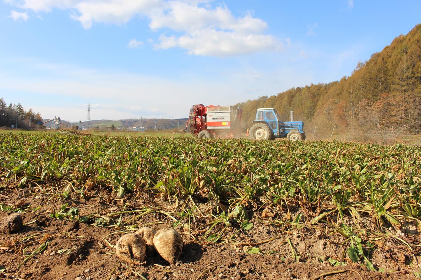 馬力が強く、耕耘面積の広い外国産のトラクターでなければ所有農地を管理できない。