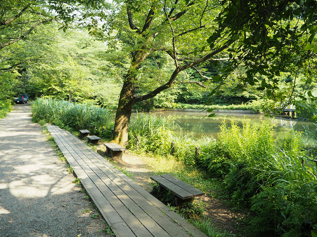 歩き疲れたら、池のほとりで休憩。