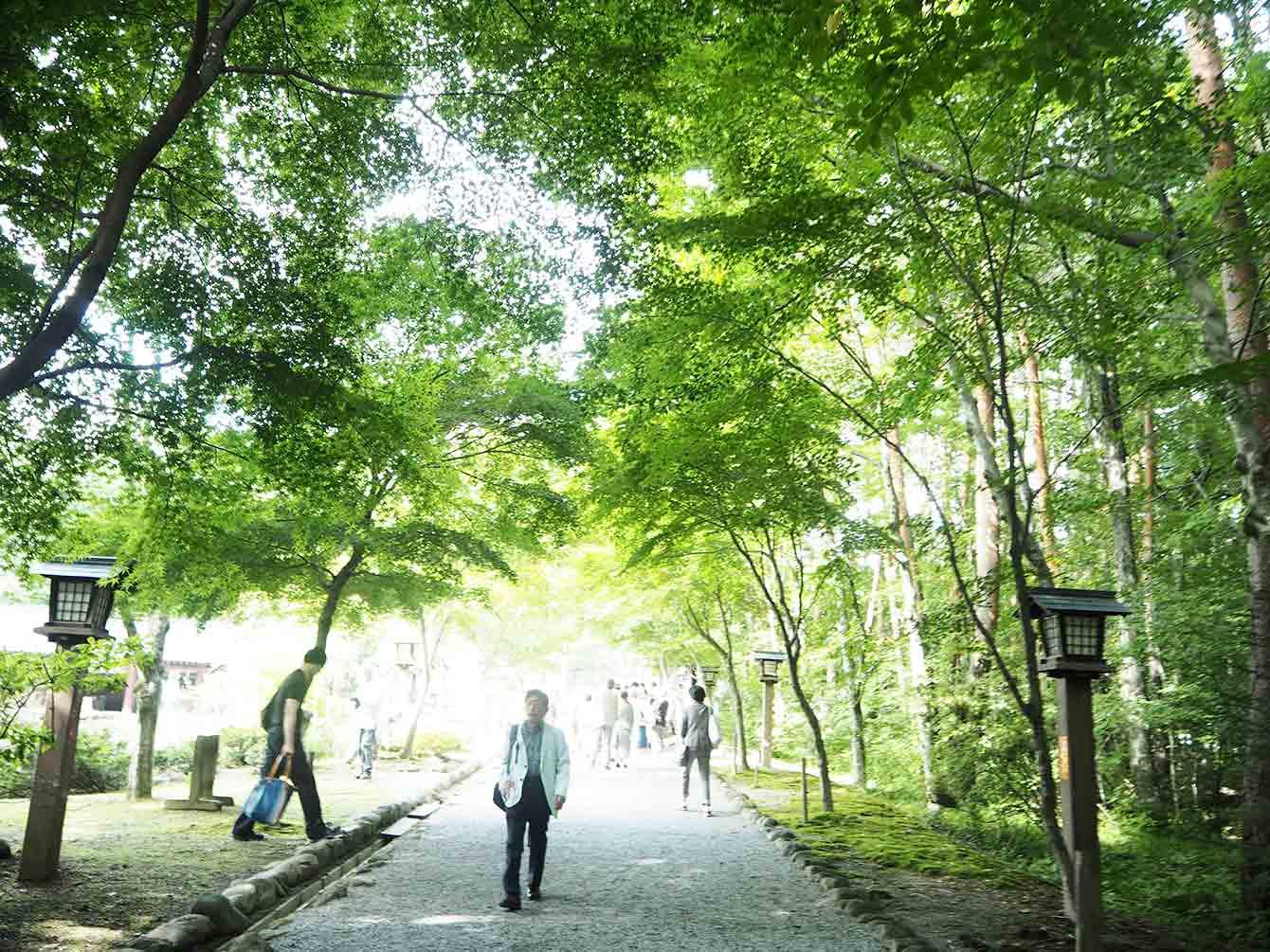 緑が多く涼しい身曾岐神社境内。場所は山梨県の小淵沢。