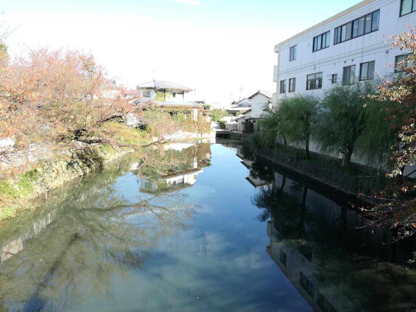現・伊予街道の橋の上から見た袋井用水。右の岸には柳、左の岸には桜。当時の風景を見てみたくなります。