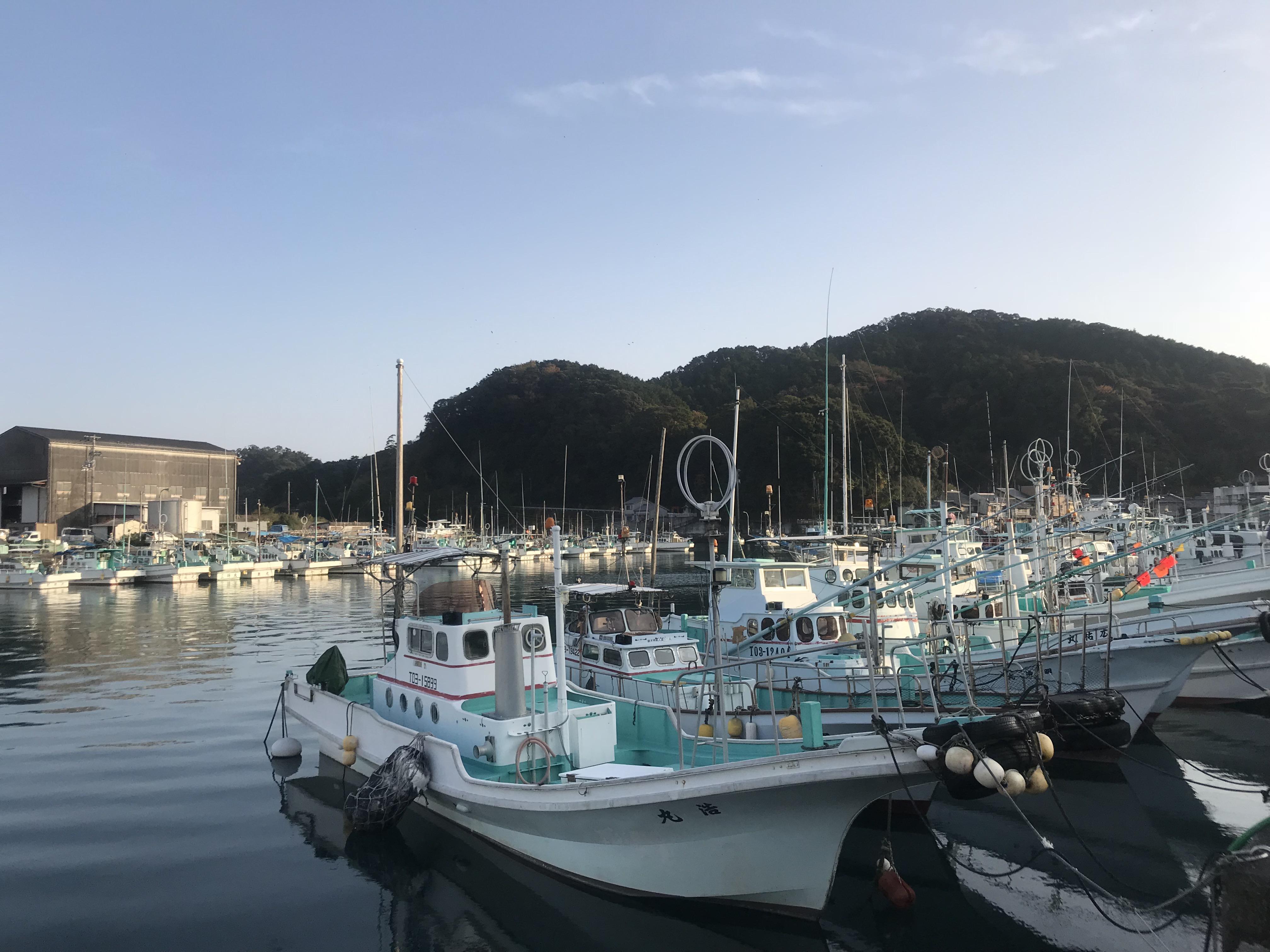知ろう、広めよう。海陽町の魅力 in 鞆浦