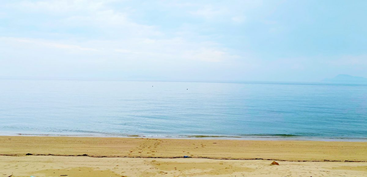 みんなに優しい海をつくる-社会福祉法人 来島会 桜井プロジェクトの挑戦-(後編)